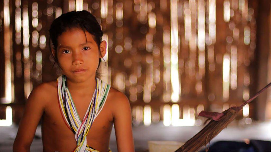 MPF investiga suposto massacre de índios isolados no Amazonas