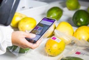 Pesquisadores da Embrapa desenvolvem sensor que avalia grau de maturação de frutas